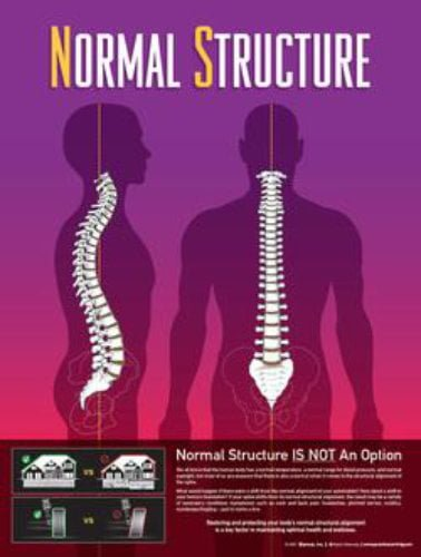 normal-structure